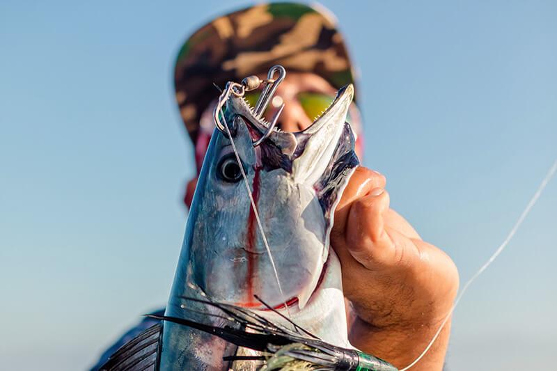 catch of the day puerto vallarta