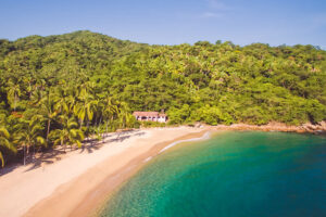 remote jungle beach in vallarta